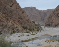 Omana 03.2015 - 3. foto