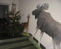 Ziemassvētki ienāk mūsu mājā... - 3. foto