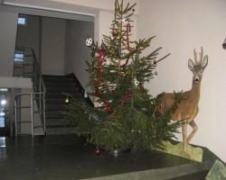 Ziemassvētki ienāk mūsu mājā...