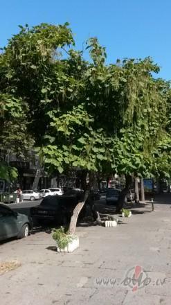 Odesa- burvīgā pilsēta ar šarmu (Ukraina)