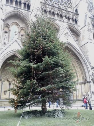 www.westminster-abbey.org