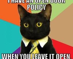 Biznesa kaķis