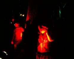 18.novembris 2008 - 2. foto