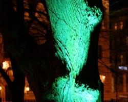 18.novembris 2008 - 3. foto