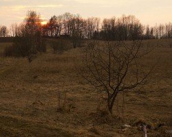 Latvijas saule :) - 2. foto