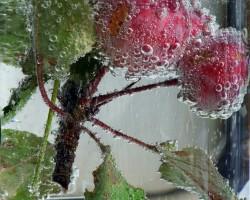mēģinu burbuļus - 3. foto