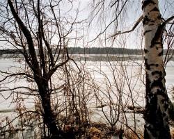 Pavasaris - 1. foto