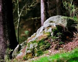 Sächsische Schweiz - 2. foto