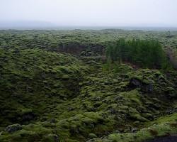 """""""Sabojātā Islande"""" :)"""