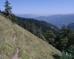 Kalni Borjomi apkārtnē