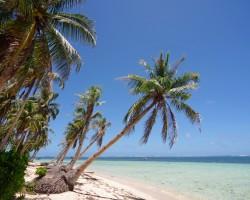 Filipīnu piedzīvojums - 2. foto