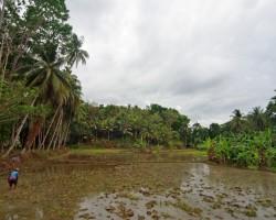 Filipīnu piedzīvojums - 1. foto