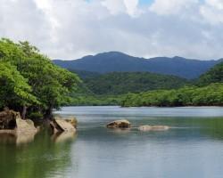 Līgo pa šķībo - Okinawa - 3. foto