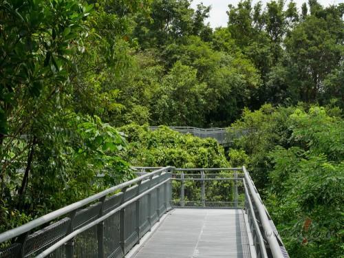Southern ridges (Singapūra)
