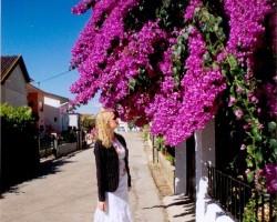 Alfarelos - ciemats pa ceļam