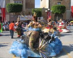 karnevaala teerpi
