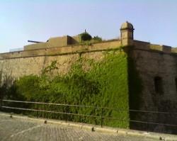 Barselona FMJ5
