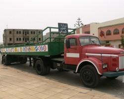 Dakhla(s) gabaliņi (Marocco) - 3. foto