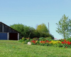 Mans dārzs - 2. foto