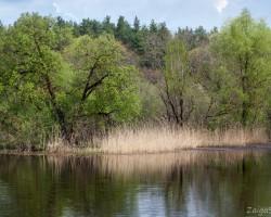 Latvijas ārēs - 1. foto
