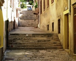 Ieliņa Pulas vecpilsētā, Horvātijā