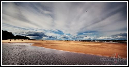 Vēja jūra...