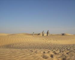 Tunisija - 1. foto