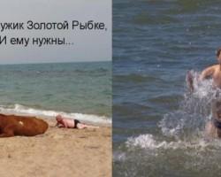 Maveriks, jūra un.....