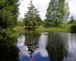 Atspulgi ūdenī - 1. foto