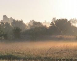 Vakars un rīts - 2. foto