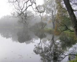 Atspulgi ūdenī - 3. foto