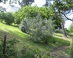 UK Gensija     ...tur- aiz mākoņiem- ir(!!!) saule!!!! - 3. foto