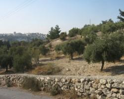 Izraelā. - 3. foto