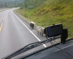 aitas ievēro CS noteikumus