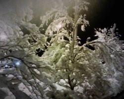Baltie Ziemassveetki nedaudz par aatru:)