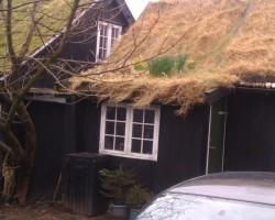 Dārziņš uz jumta