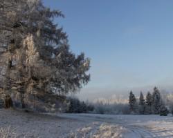 Ziemas mājieni