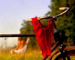 velosipeedu vasara