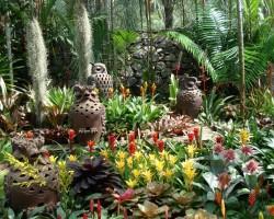 Botāniskais dārzs Taizemē