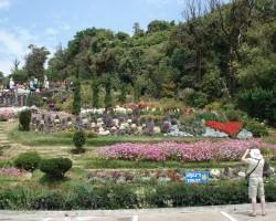 Ziedu parks par godu Taizemes karalim