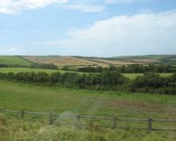 UK 2008 - 2. foto