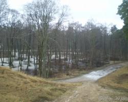 ziemassvetki - 3. foto