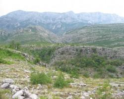 Dināra kalnu grēda