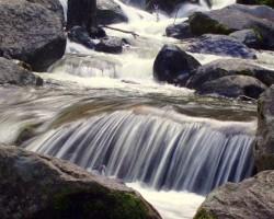 Meži un ūdeņi - 3. foto