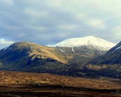 Skotijas kalniene/Ziema - 2. foto