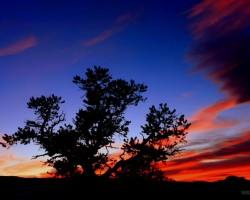 Saullēkti/Saulrieti - 3. foto