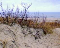 Jūra pie Liepājas - 2. foto