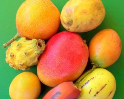 Dažādi tropiskie augļi - 3. foto