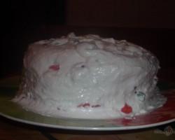 Pannas tortīte