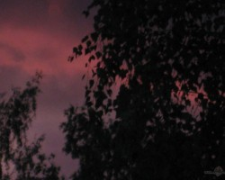 debesīs veroties - 2. foto